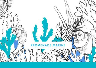 Promenade marine
